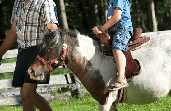 Giri in pony per bambini