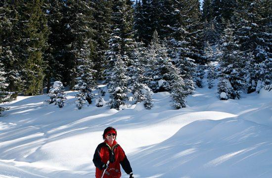 Felice sciatore di fondo