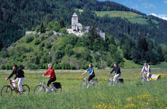 Tour in mountain bike con vista sui castelli